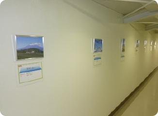 工場見学者通路へ富士山写真の展示